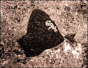 Posbankmuts
